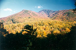 Great Smoky Mountains of Tennessee - Gatlinburg, Pigeon Forge, Sevierville